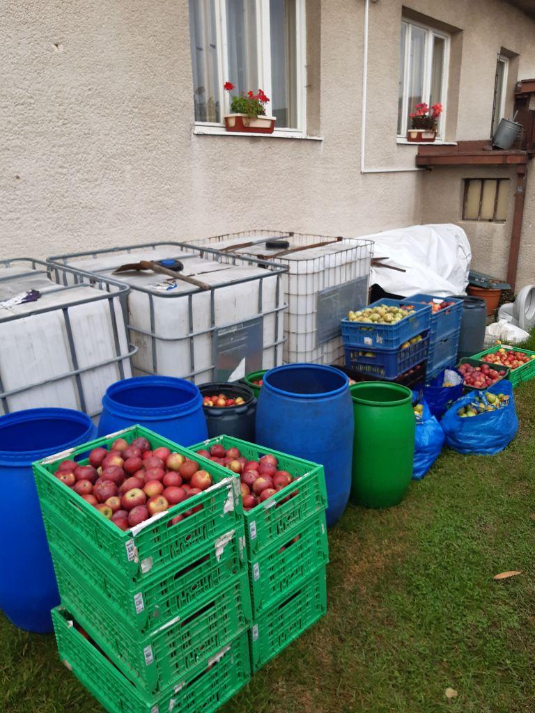 Jabĺčka pripravené na spracovanie